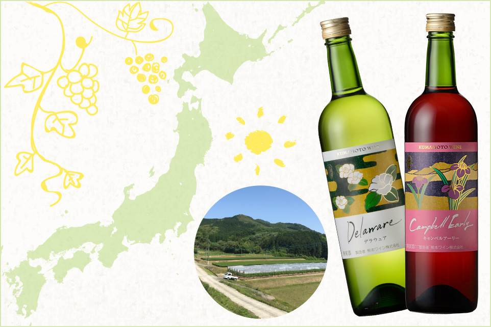 """「国産ワイン」と「日本ワイン」は違うんです! いま""""日本ワイン""""がすごいことになってます。"""