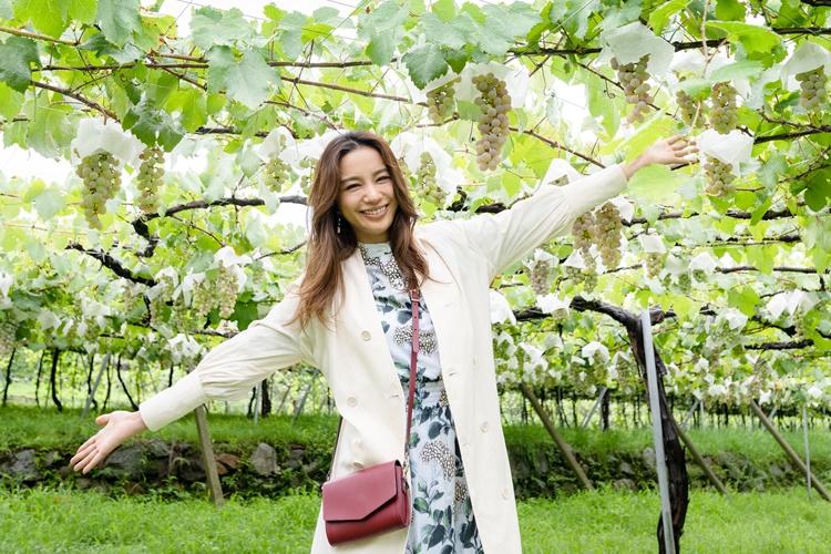 日本で一般的である棚栽培のぶどう畑。「ぶどう畑に入るの初めて!」